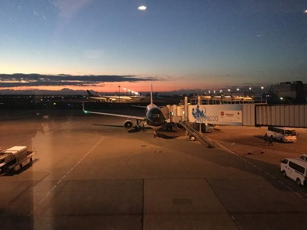 撮って出し。。岩国遠征の為早朝羽田空港 1月14日