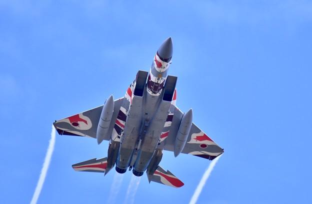 新色の飛行教導群アグレッサー 機動飛行(7)