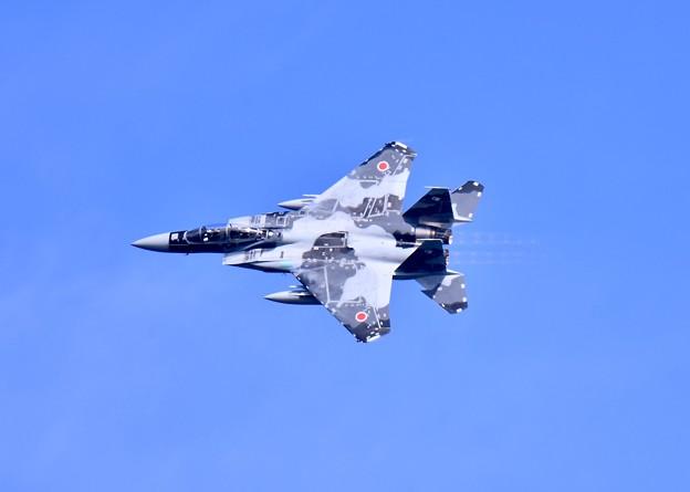 新色の飛行教導群アグレッサー 機動飛行(8)