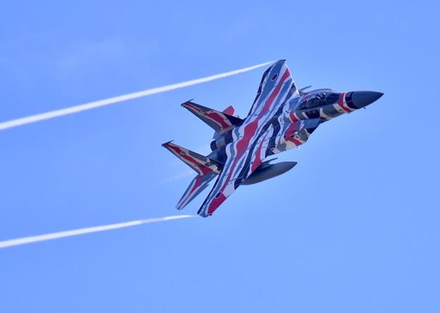 新色の飛行教導群アグレッサー 機動飛行(9)