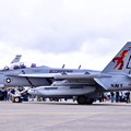 Photos: 撮って出し。。厚木基地一般開放でスペシャルな塗装機 VAQ-132スコーピオンズ 20190427