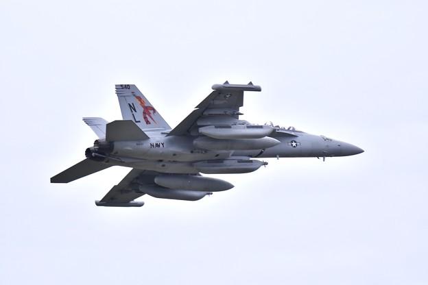撮って出し 厚木基地 韓国へ向かうVAQ-132スコーピオンズ50周年記念塗装機 (4) 20190429