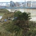 Photos: 先日台風19号の爪跡。。川崎市多摩川河川敷。。荒地に 20191014
