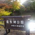 Photos: 20121118_142005