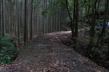 R260東宮坂トンネル旧道探索・4