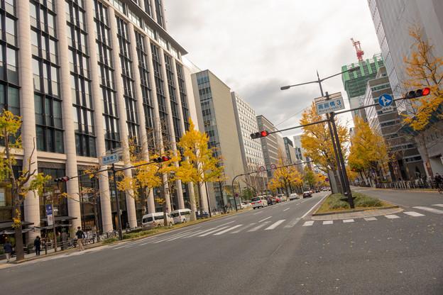Photos: 大阪道路さんぽ・5