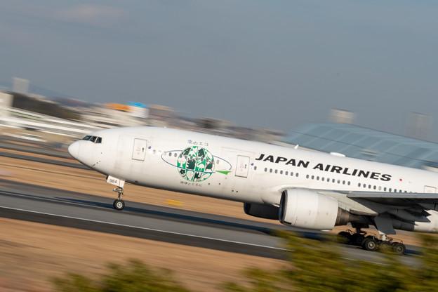 伊丹空港にて・1