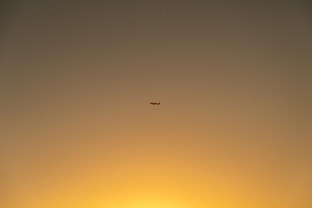 伊丹空港にて・8