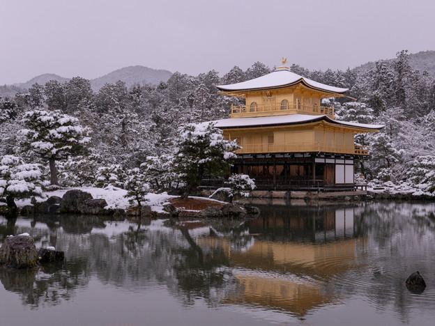 2019雪の金閣寺・3