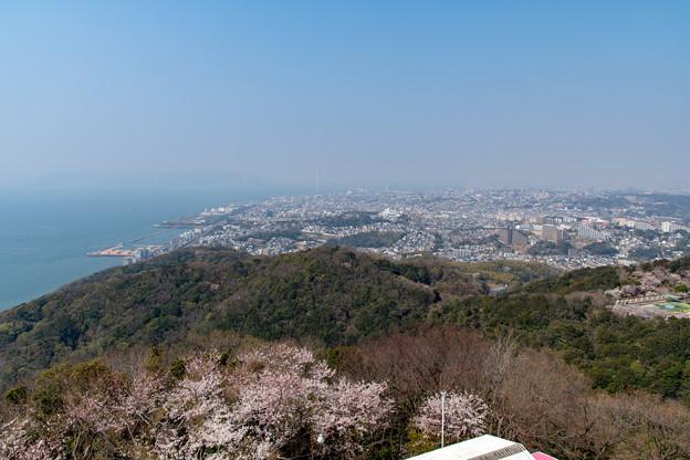 Photos: 須磨浦公園の桜・5