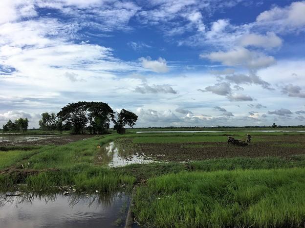 ヤンゴン川の川向う (3)