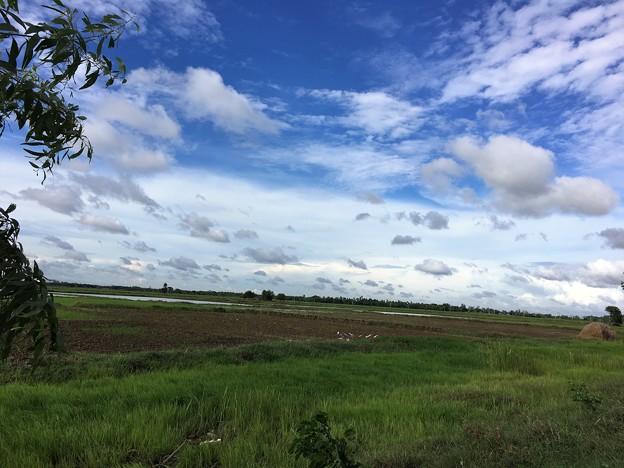 ヤンゴン川の川向う (4)