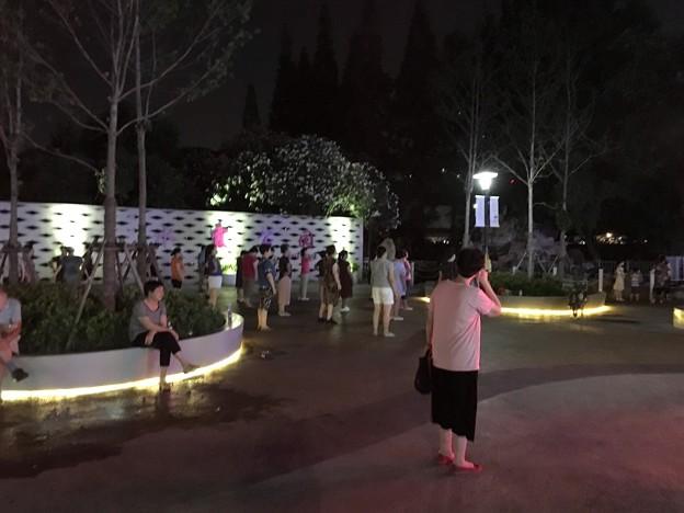 仙霞路 (1)