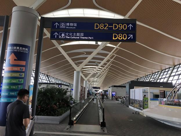 浦東空港 (4)