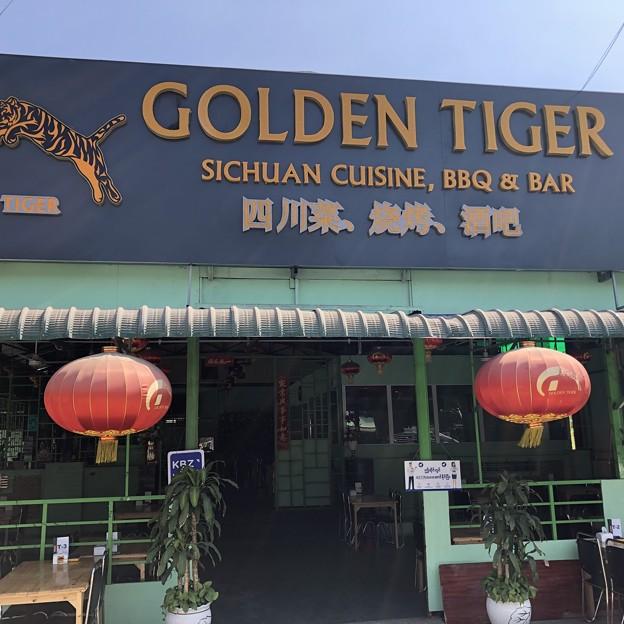 GOLDEN TIGER (19)