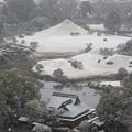 Photos: 水前寺富士の雪化粧 2020年12月30日