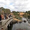 Photos: 水前寺成趣園 2021年1月1日