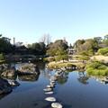 Photos: 池 2021年1月