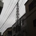 Photos: 180310_1136~01