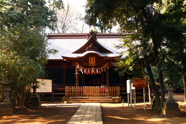 氷川女體神社(氷川女体神社)埼玉県さいたま市
