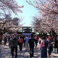靖国神社 東京都新宿区