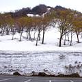Photos: 雪の壁