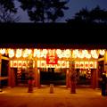 Photos: 桜木神社 千葉県野田市