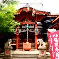 Photos: 於岩稲荷(陽運寺) 東京都新宿区