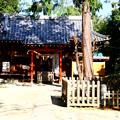 中山神社(氷川簸王子神社) 埼玉県さいたま市見沼区