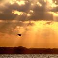 朝日の光芒