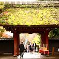Photos: 深大寺 東京都調布市