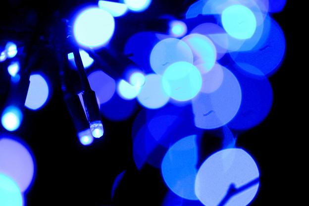 光の精たち