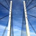 Photos: 斜張橋
