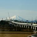 富士に続く道