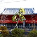 清水観音堂(上野寛永寺) 東京都台東区