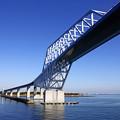 Photos: 見上げるゲートブリッジ