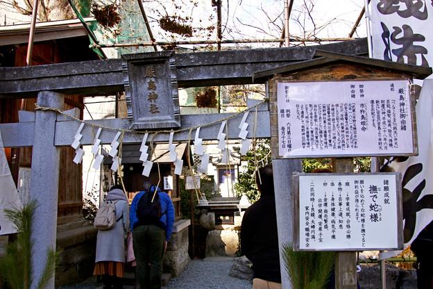厳島神社(弁財天) 埼玉県川越市