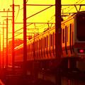 夕日を追う列車