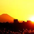 Photos: Sun Set