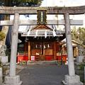 Photos: 江島杉山神社 東京都墨田区