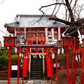 Photos: 塚越稲荷神社 埼玉県蕨市