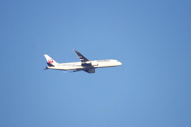 JAL( Japan Airlines Co., Ltd.、)