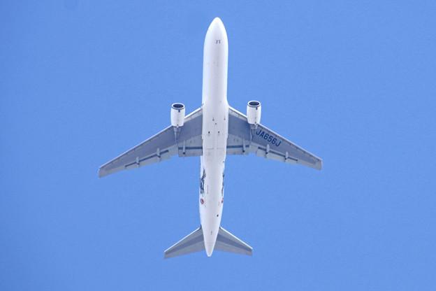 JA656J  JAL  767-300
