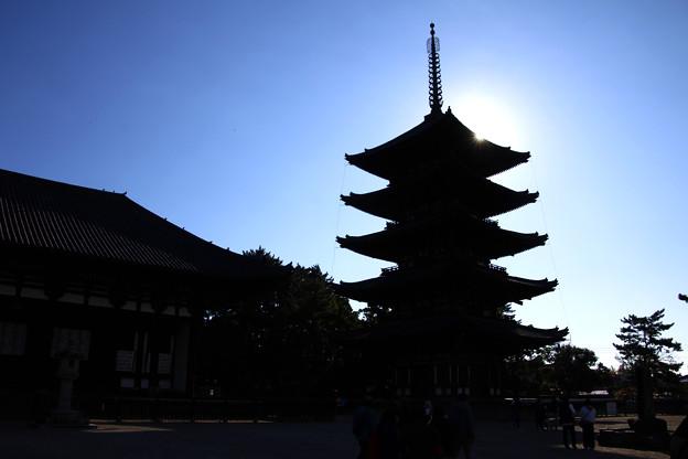 Photos: 奈良の都
