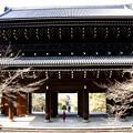 Photos: 浄土宗総本山 知恩院三門 京都府京都市