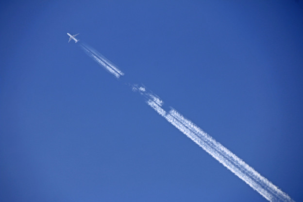 Photos: Contrail