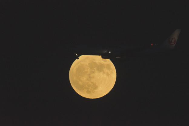 Photos: 満月と・・・