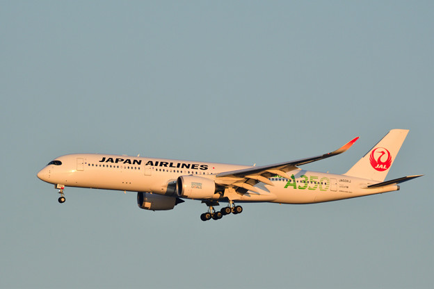 Photos: JAL AIRBUS A350