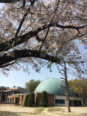 一宮地域文化広場プラネタリウム「ナナとハチ」