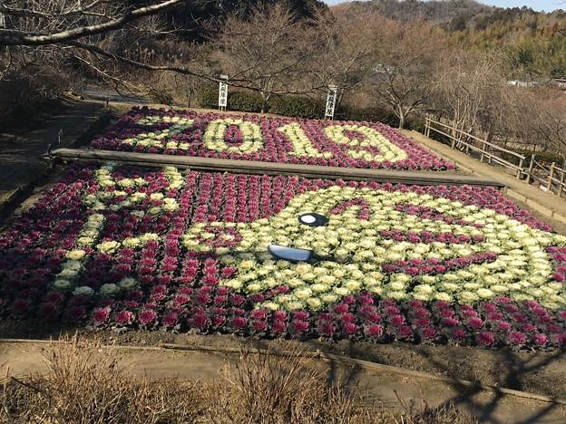 OkudonoGomokukamameshi19